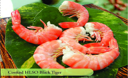 Cooked HLSO Black Tiger