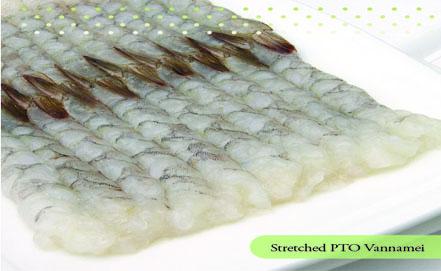 Stretched PTO Vannamei Shrimp